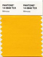 (c) Pantone 14-0848 TCX