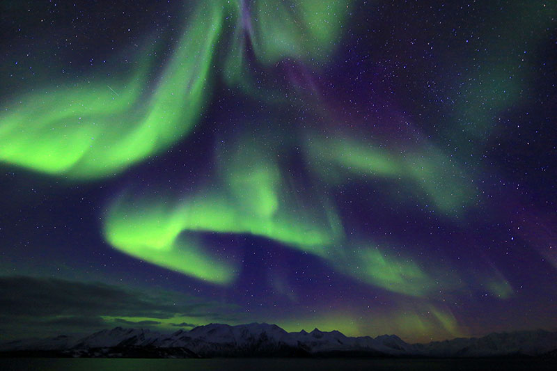 Northern Lights in Greenland- Credit:Yukun Shih