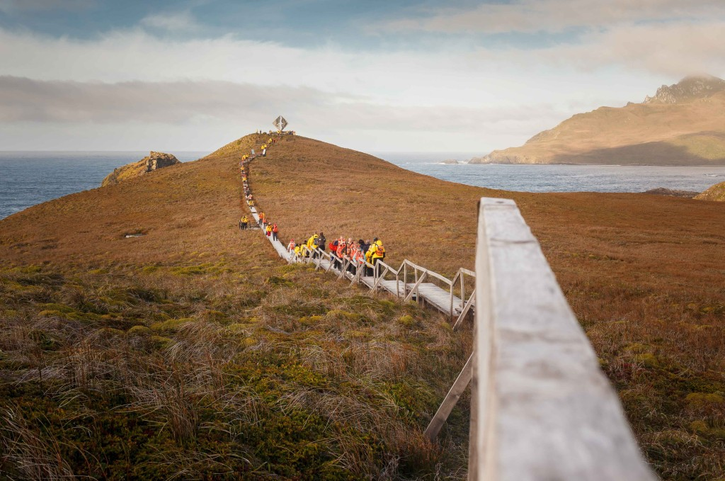 Quark passengers hiking