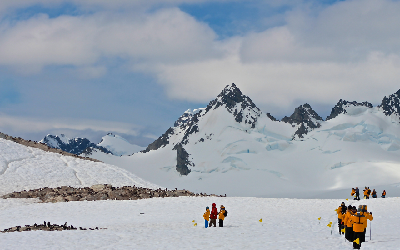 Passengers on Antarctic expedition hike the peninsula, stopping to view a Gentoo penguin colony with Dr. Tom Hart from Penguin Watch. Photo: Miranda Miller
