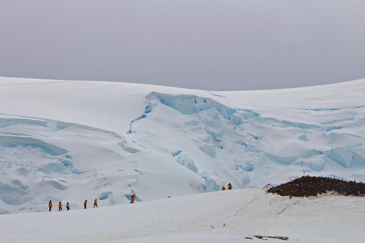 Passengers hike a gentle incline to visit a Gentoo penguin colony at Mikkelsen Harbour, Antarctica. Photo: Miranda Miller