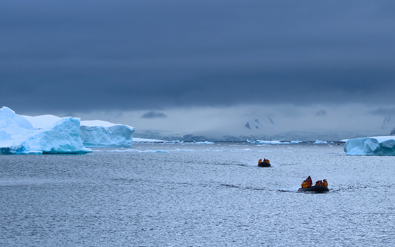 Two groups of ten passengers navigate massive icebergs by Zodiac on a recent Antarctic Explorer expedition. Photo: Miranda Miller