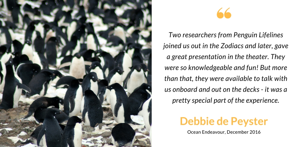 Antarctic passenger on penguinologists