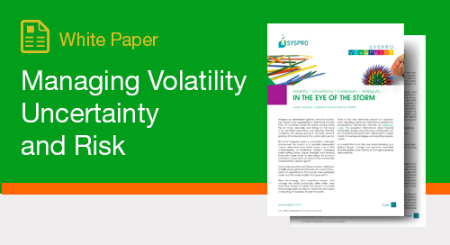 Managing Volatility, Uncertainty and Risk