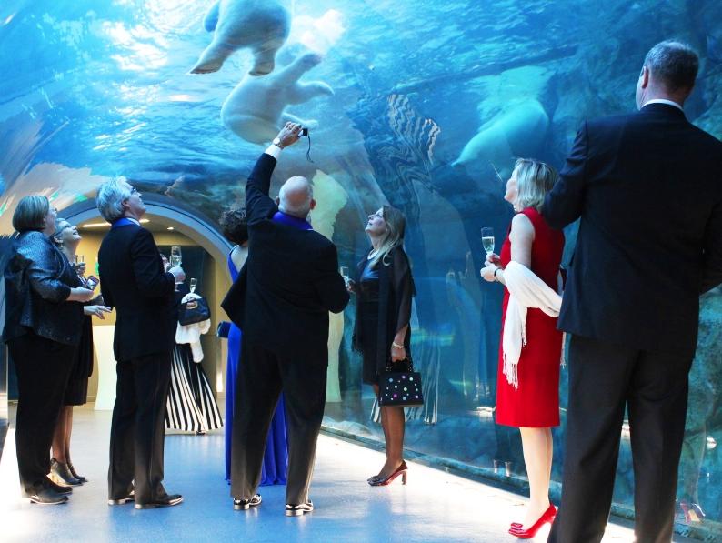 Assiniboine Park Zoo - Amazing Meeting Locations Winnipeg