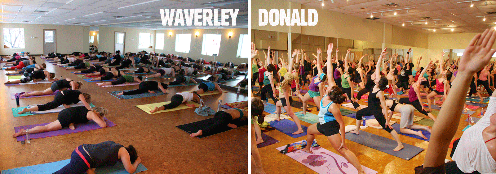 Moksha Yoga Winnipeg - Winnipeg Meeting Locations