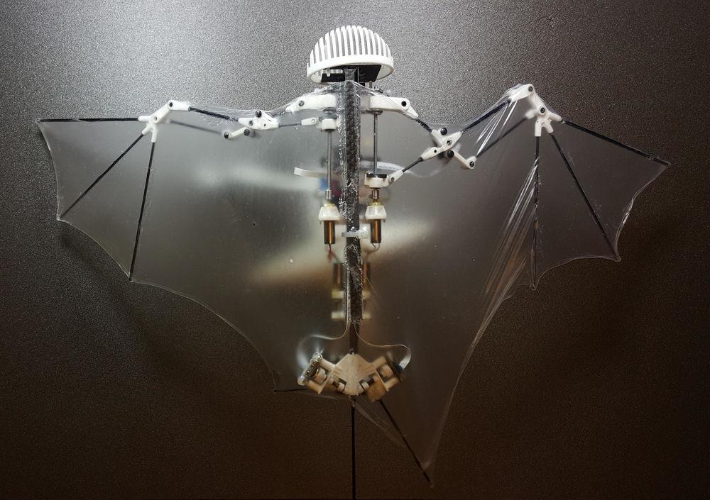 bat bot drone