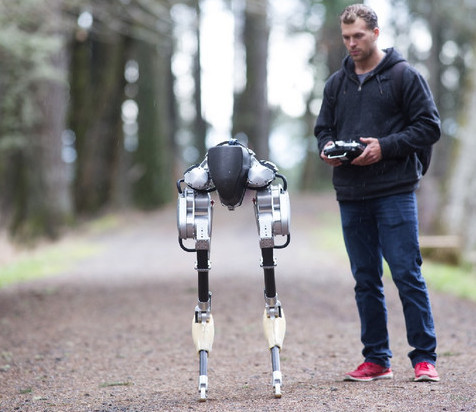 walking bipedal robot
