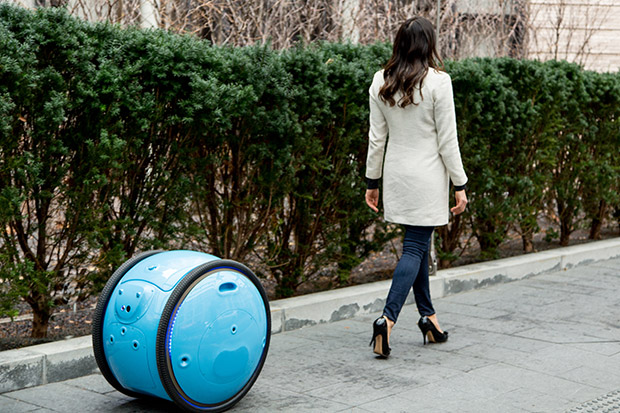 rolling cargo robot