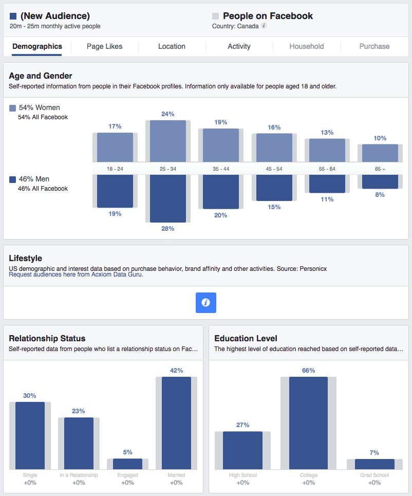 Facebook Business Manager demographics