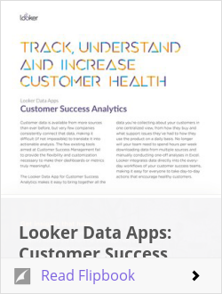 Looker Data Apps: Customer Success Analytics