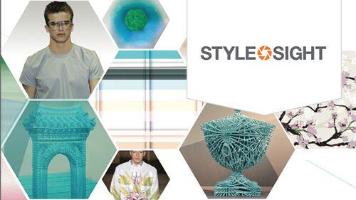 Stylesight Case Study