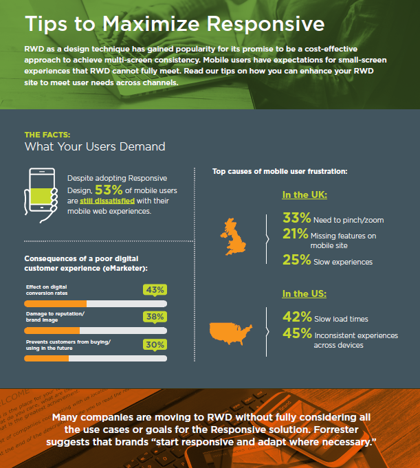 Maximize Responsive Web Design Infographic