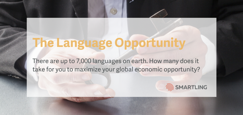 The Language Opportunity