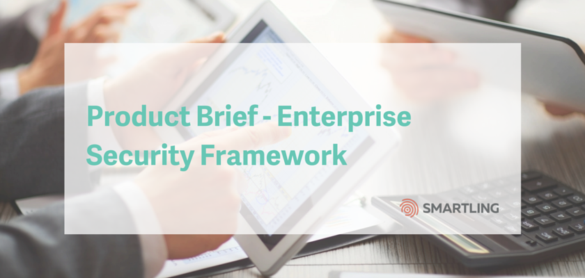 Product Brief - Enterprise Security Framework
