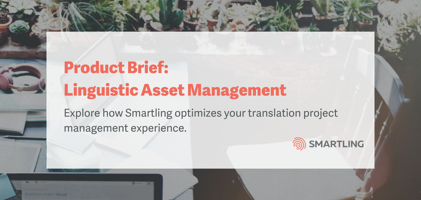 Product Brief: Linguistic Asset Management