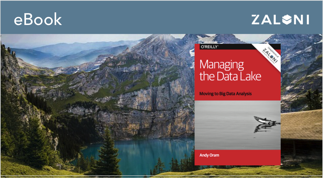 Managing the Data Lake