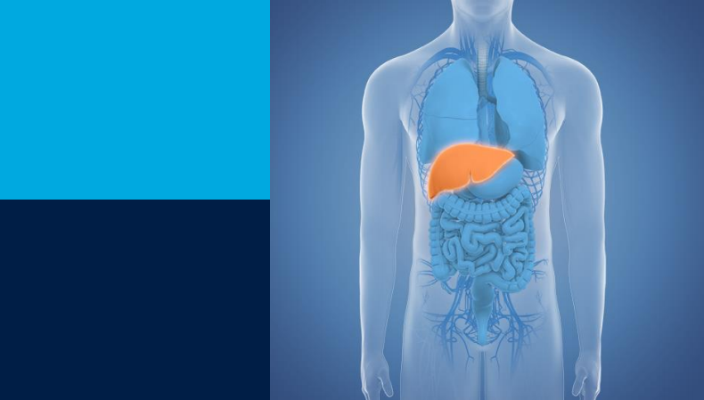 Global Value Dossier for Liver Resection