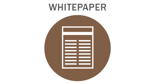 Risk Insight Solutions Whitepaper