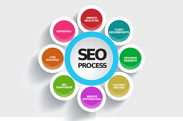 SEO Analysis Process