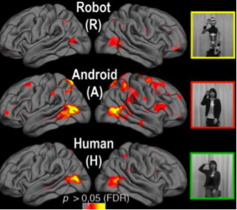 The human brain exhibits more extreme activity when viewing a character that falls in the uncanny valley