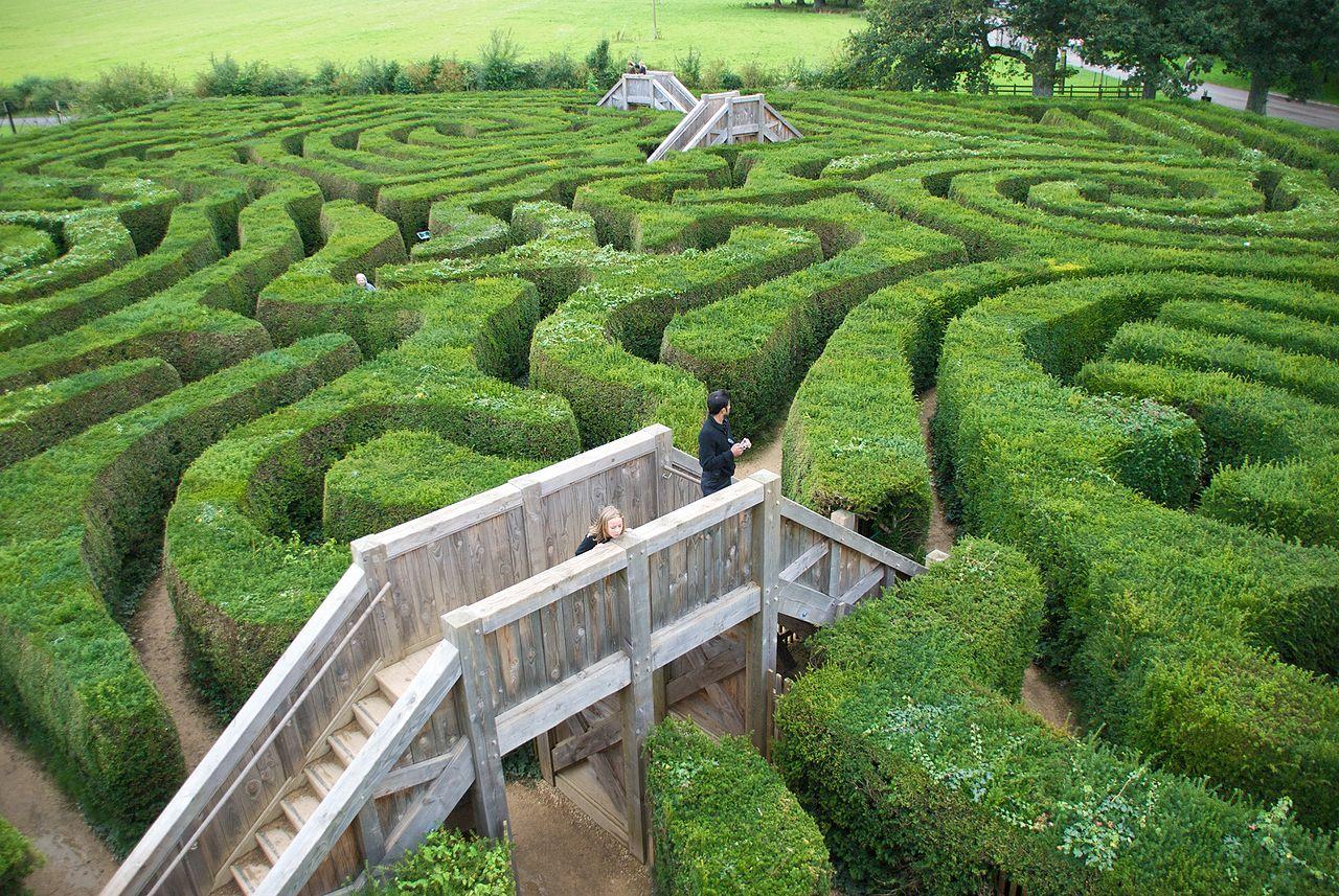 maze hassle