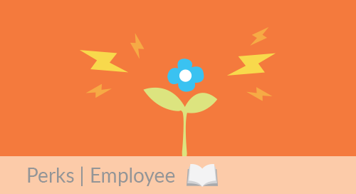 The Wallflower that Could Supercharge Your Business