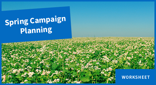 Planning a Spring Marketing Campaign