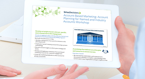 ABM: Account Planning for Named and Industry Accounts Workshop Overview