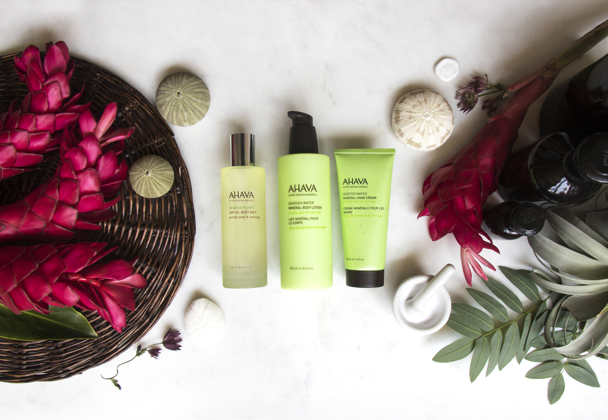 Prickly Pear &  Moringa Body Care collection