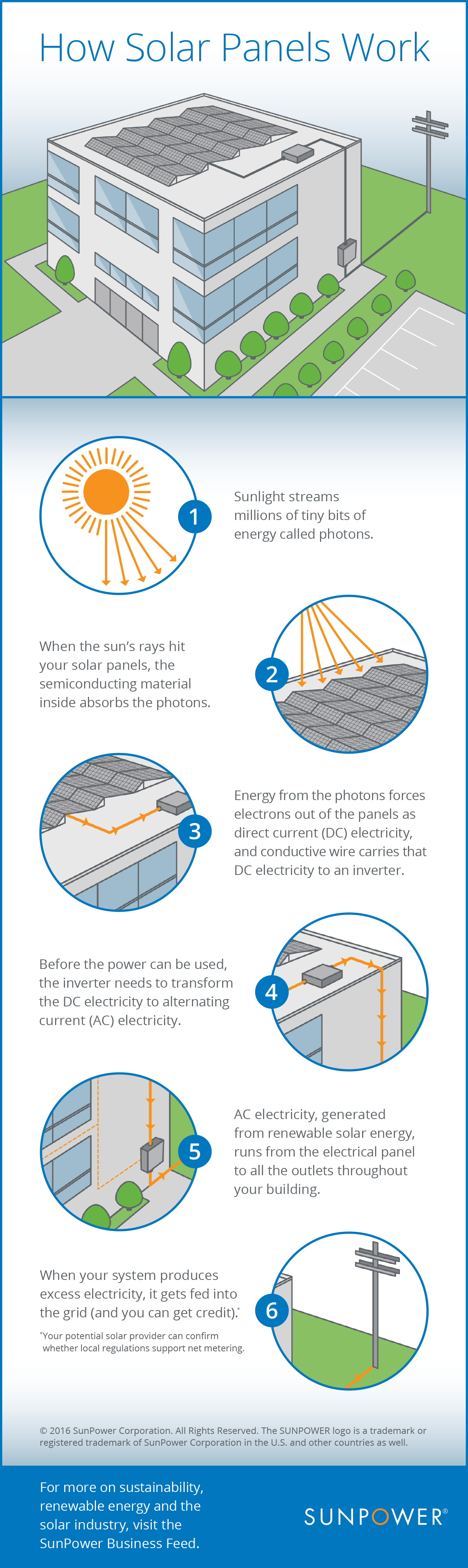 How commercial solar panels work infographic