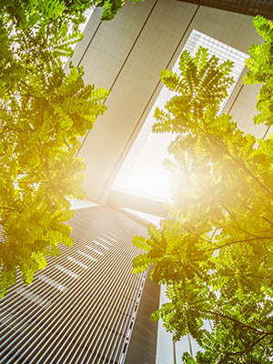 Businesses are helping drive the positive environmental impact of solar power