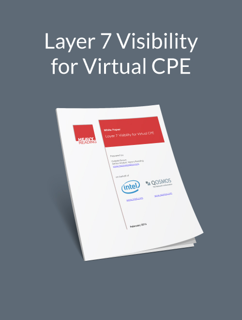 Layer 7 Visibility For Virtual CPE