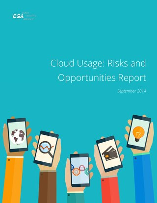Cloud Usage: Risks and Opportunities Report