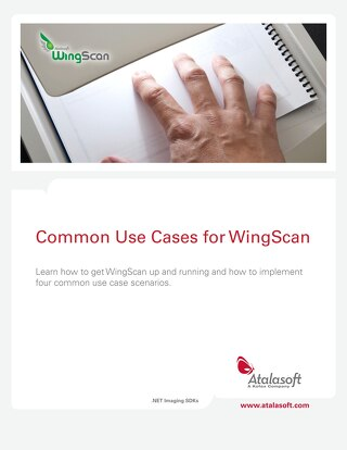 Common Use Cases for WingScan