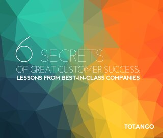 6 Secrets of Great Customer Success