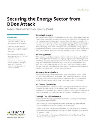 Protecting the Energy Sector from DDoS