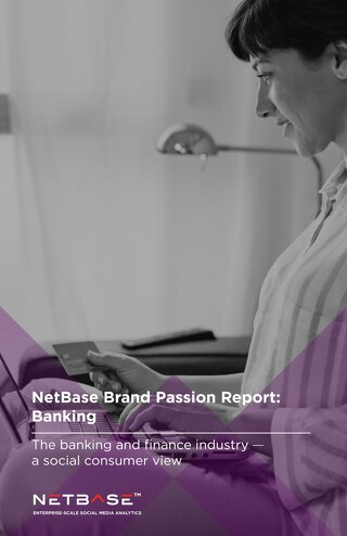 NetBase Brand Passion Report: Banking