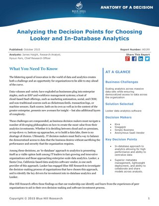 Blue Hill report 'Analyzing the Decision Points for Choosing Looker'