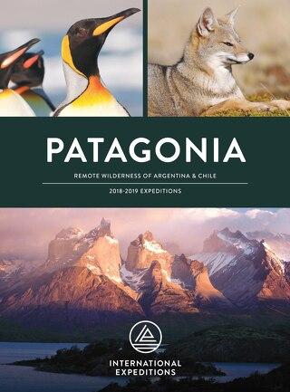 2017-2018 Patagonia