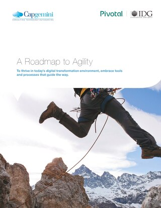 A Roadmap to Agility