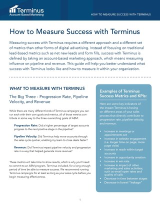 How to Measure Success with Terminus