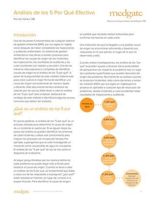Análisis de los 5 Por Qué Efectivo
