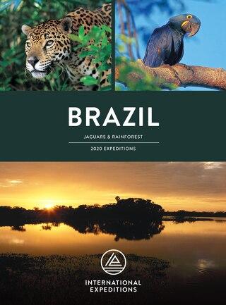 2018 Brazil