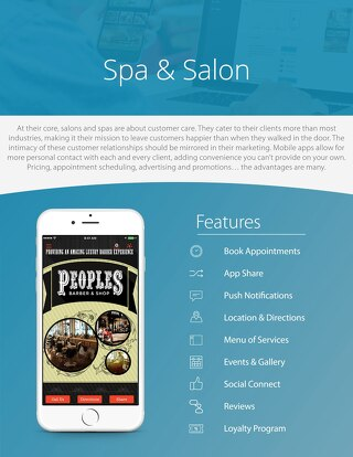 Spas & Salons Industry Example
