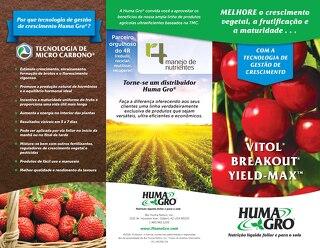 Plant Growth Management Brochure (HG) Portuguese