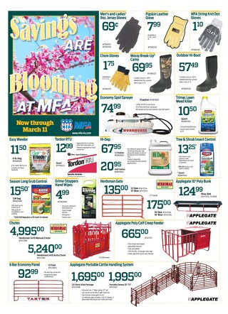 March 2017 Sales Flyer