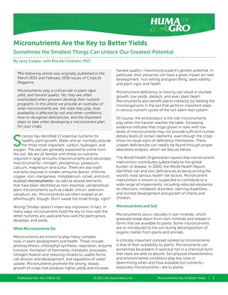 Micronutrients Are the Key to Better Yields