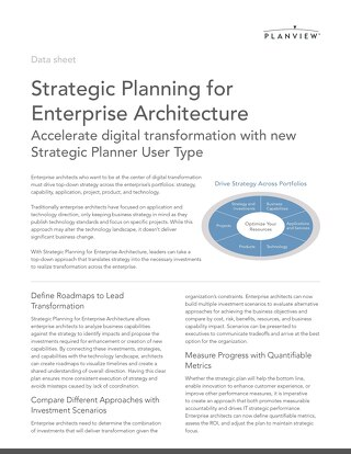 Strategic Planning for Enterprise Architecture