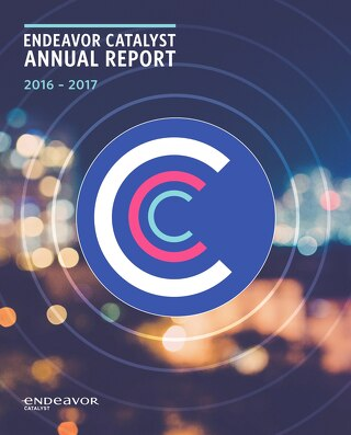 2017 Endeavor Catalyst Annual Report
